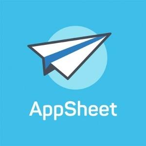 App Sheet, Computer Software Business