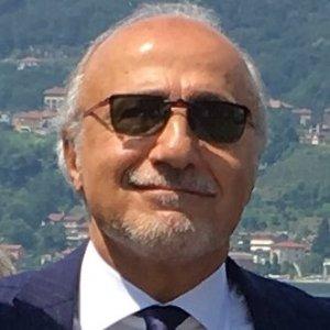 Domenico Cristarella, Independent Consultant
