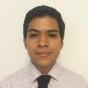Yimerson Tobias, Financial Analyst