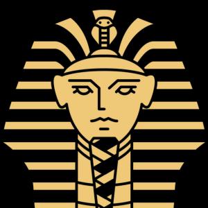 Khaled Hamed, Financial Modeling Consultant