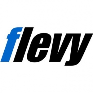 Flevy, Best Practice Frameworks & Tools (used by Fortune 100) - Strategy, OpEx, Digital, Change, Process