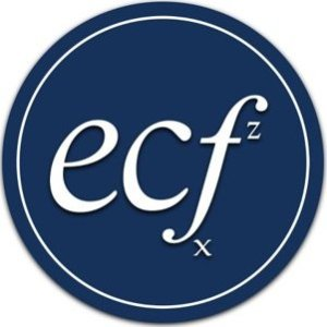 ECF Consultancy, Financial management and analysis
