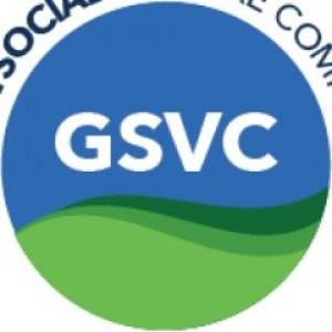 GSVC, Helping Entrepreneurs Transform Their Businesses