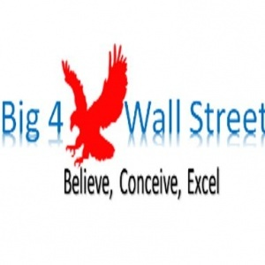 Big4WallStreet, Financial Modeling / Planning & Perfomance / Data Analysis & Forecasting