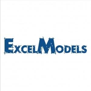 ExcelModels, Finance professor & Excel master